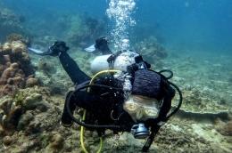 Karang di Pulau Samalona (Dokumentasi Pribadi)