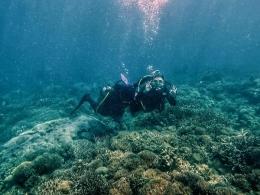 Pemandangan bawah laut Pulau Samalona (Dokumentasi Pribadi)