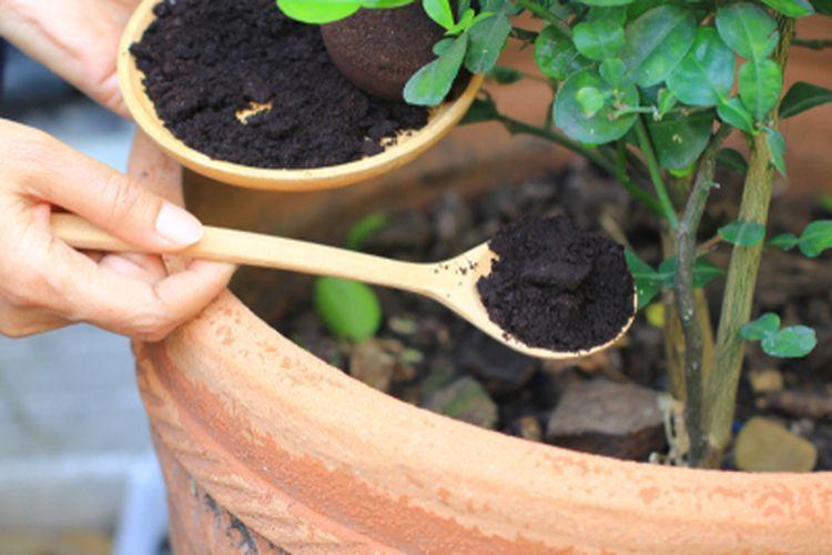 ilustrasi ampas kopi. (Sumber foto www.kompas.com)