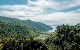 Pemandangan hutan di sekitar Danau Toba. Sumber: Ekonomi.bisnis.com
