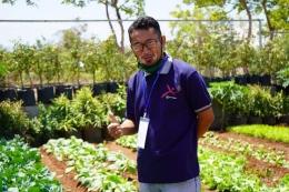 Foto.dok.pri./ tanaman sayuran yang subur berkat pupuk organik eko enzyme