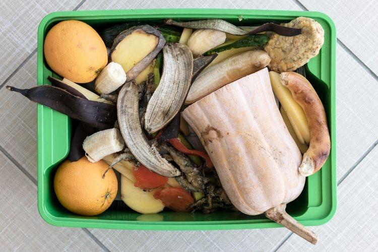 Beberapa limbah dapur rumah tangga yang bisa dimanfaatkan untuk membuat Eco Enzym. Sumber: Freepik via Kompas.com