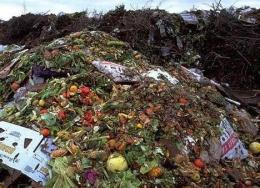 Sampah sisa makanan jika tidak dimanfaatkan akan merusak lingkungan dan kehidupan. dok.standard.co.uk