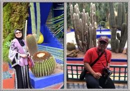 Pohon Kaktus Menjadi Koleksi Favoritnya (Dok.Pribadi)