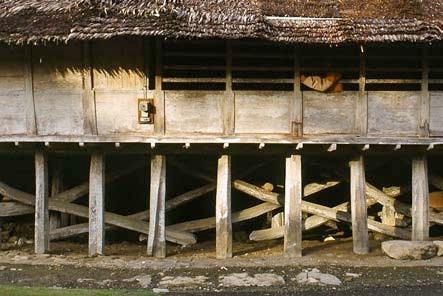 konstruksi dan tehnik bangunan tradisional suku nias yang