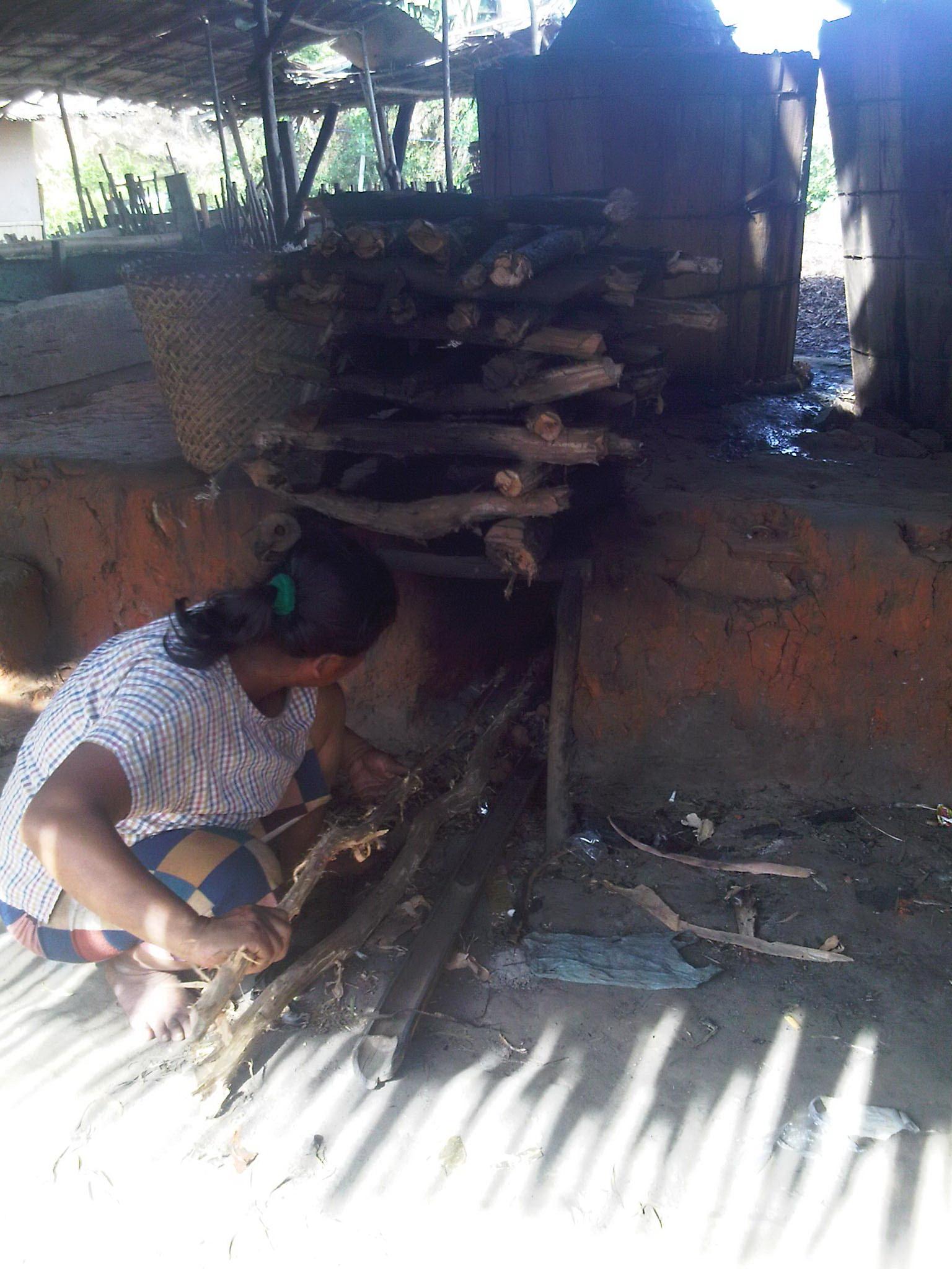 Daun Kayu Putih Cara Membuat Minyak Kayu Putih Di Indonesia