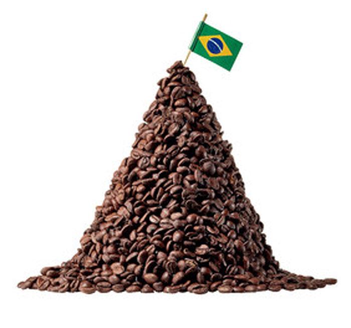 Sedikit Tentang 666: Fakta Tentang Brazil Gan.