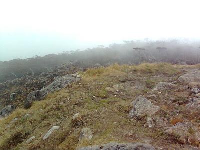 Masih pemandangan dari puncak II, Pos 10