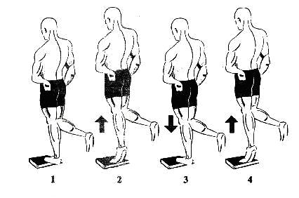 Ilustrasi latihan calf raises