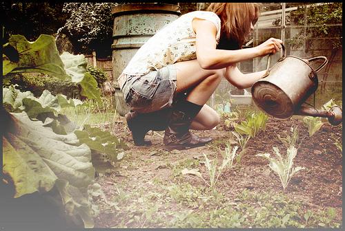 20/365 Nurturing those leaves