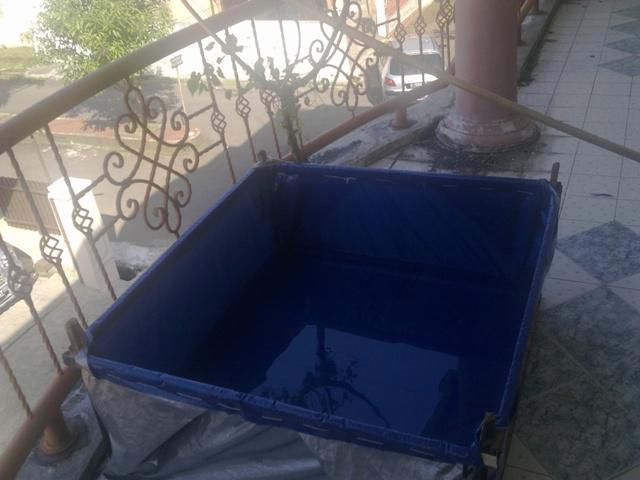 membuat sendiri kolam ikan portable di rumah