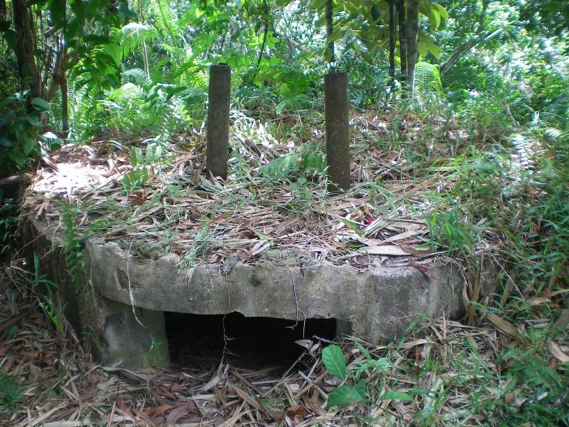 Puing-puing Pillbox