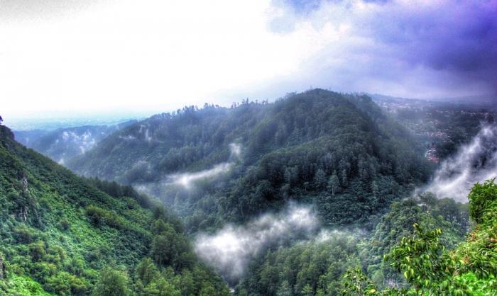 Lanskap perbukitan dan hutan dari atas tebing/rul