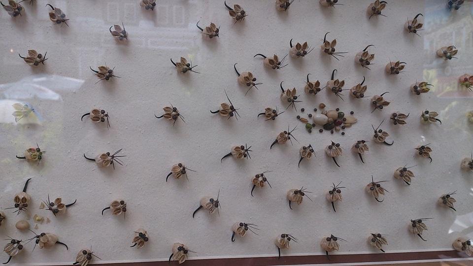700 Koleksi Gambar Binatang Dari Biji Bijian Terbaik