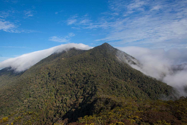 4 Gunung Tertinggi Yang Ada Di Malaysia Halaman All Kompasiana Com