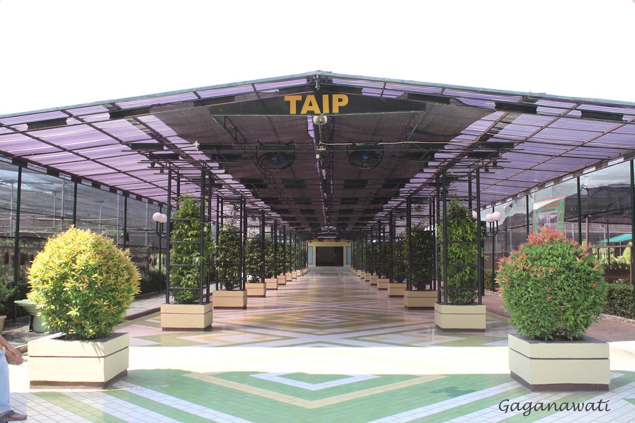 Gedung Taman Anggrek Indonesia Permai