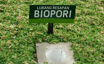13918 biopori lubang kecil pencegah banjir 580eee430ab0bdc517d41f7b