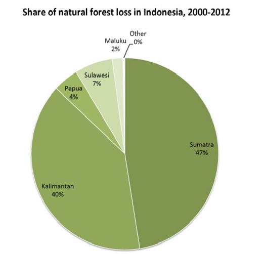 Hutan Indonesia yang hilang, data tahun 2000-2012