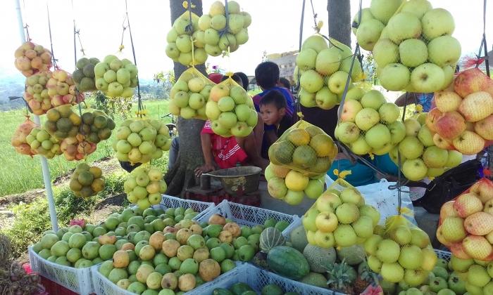 Merias Sawah Pujon Kidul Menjadi Surga Wisata Oleh Mas Yunus Halaman