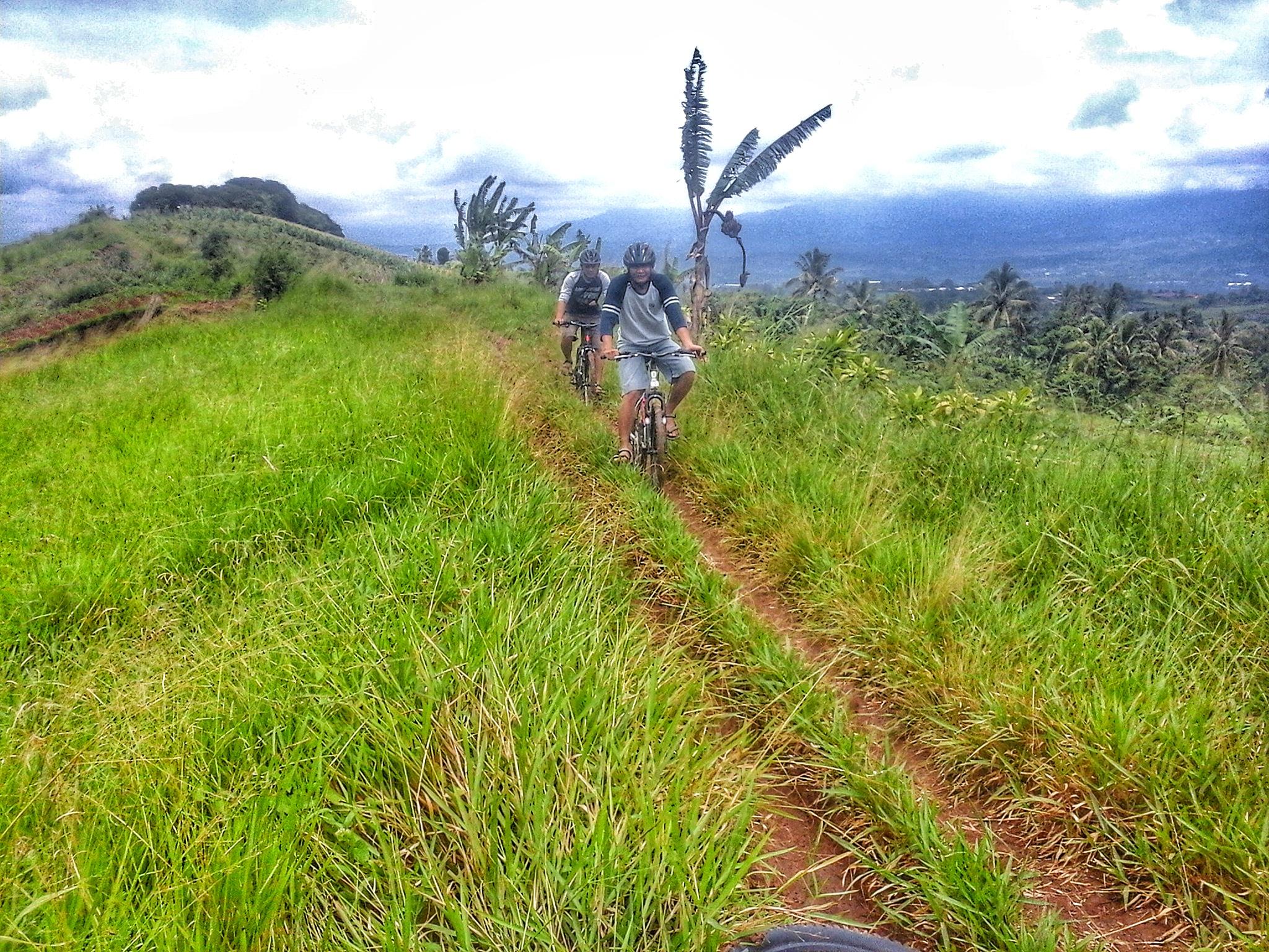 jalan setapak membentang panjang di punggung gunung