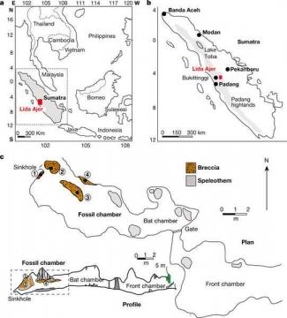 Temuan Fosil Di Gua Lida Ajer Sumatera Barat Menentukan Sejarah Halaman All Kompasiana Com