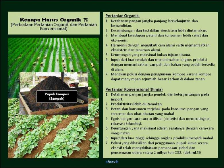 Perbedaan Pertanian Organik dan Pertanian Konvensional (Dok-Asrul)