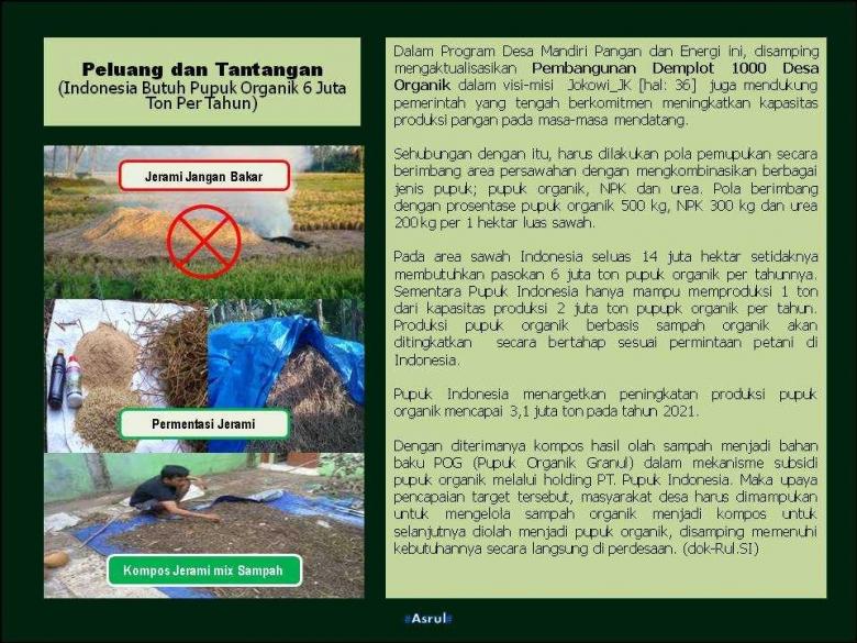 Peluang dan Tantangan Pertanian Organik Indonesia (Dok-Asrul)