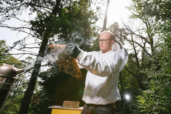 Salah satu peneliti yang menelusuri jejak residu pestisida pada lebah. Photo: Guillaume Perret, ABC