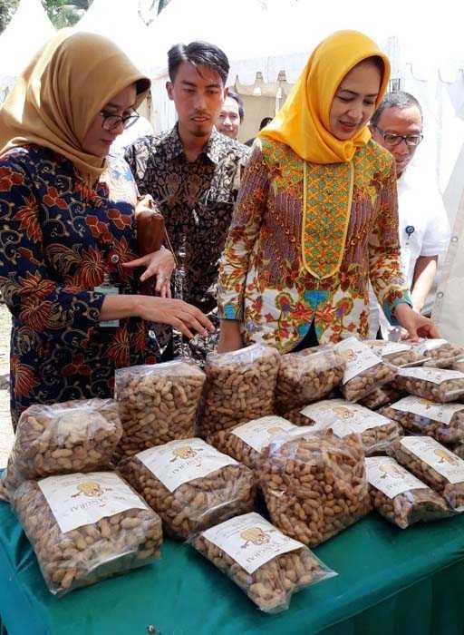 Walikota Tangsel Airin Rachmi Diany sempat hadir melihat-lihat pameran hasil lokal Keranggan di lokasi Festival Industri Kreatif Keranggan, Setu, Tangsel. (Foto: Yudi/Indag)