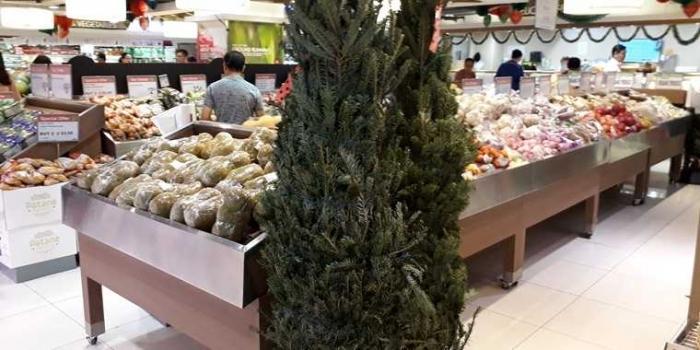 Bahan Pembuat Pohon Natal, Mulai dari Botol Bekas, Cabai