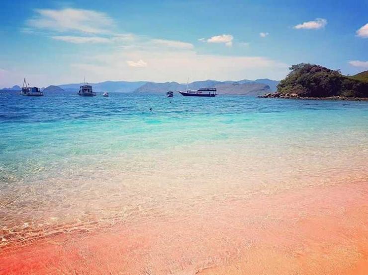 Pantai Pink di Lombok, sumber ig @2bagpacks1map