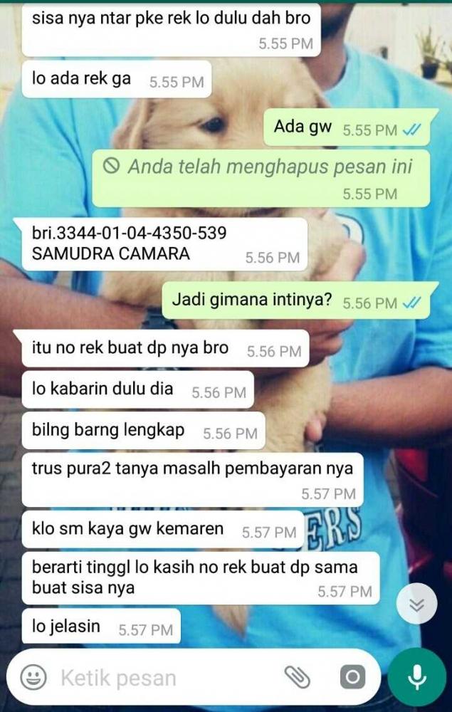 Waspadai Modus Penipuan Lewat Whatsapp Halaman 1 Kompasiana Com
