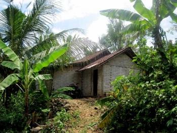 840+ Gambar Rumah Berdinding Bambu Terbaik
