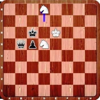 Belgia dan Inggris (chess24.com)