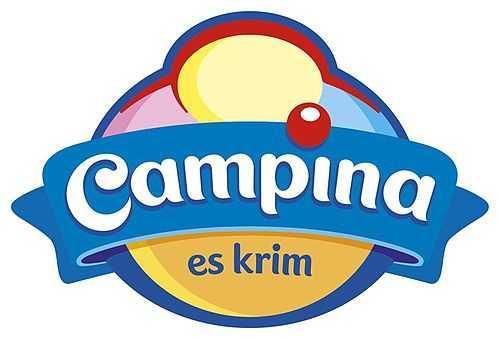 ampina.co.id