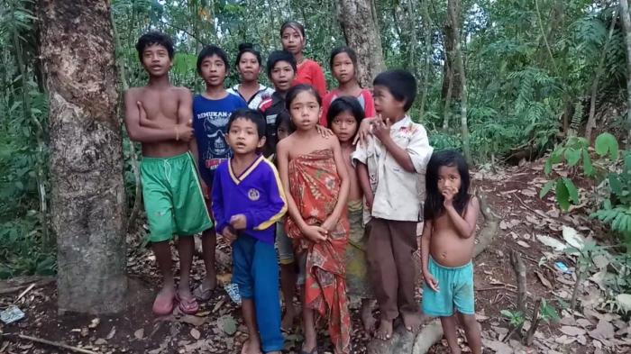 Suku Anak Dalam, Penduduk Asli Jambi