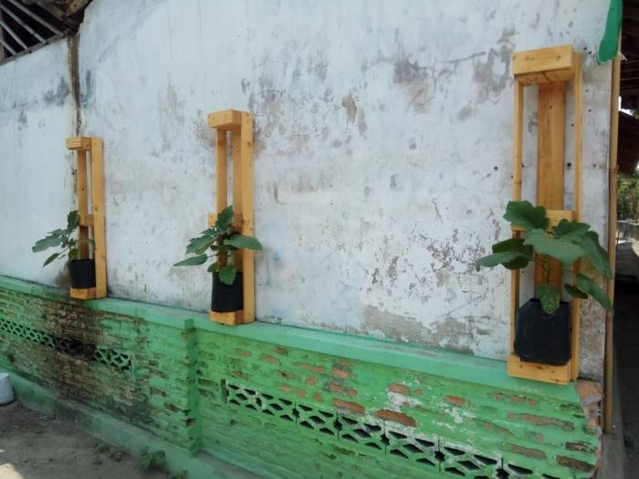 Warga memanfaatkan tembok untuk menanam dengan bantuan penyangga kayu/foto dokpri