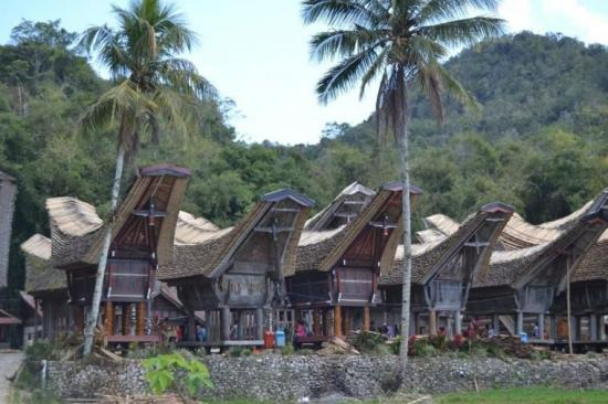 Keeksotisan Wisata dan Budaya Tana Toraja, Sajikan Sejuta Keunikan bagi Wisatawan