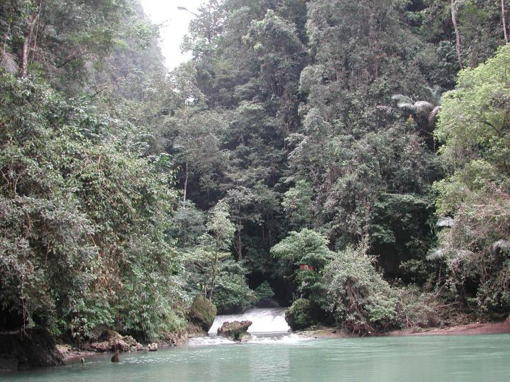 source: surgalambusango.blogspot.com