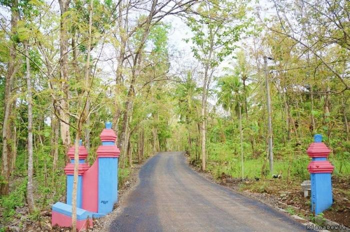 Menyusuri jalan di area Kecamatan Gedangsari, Gunung Kidul (Dok.Pri)