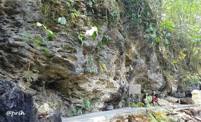 Tebing gamping, Selarong (dok pri)