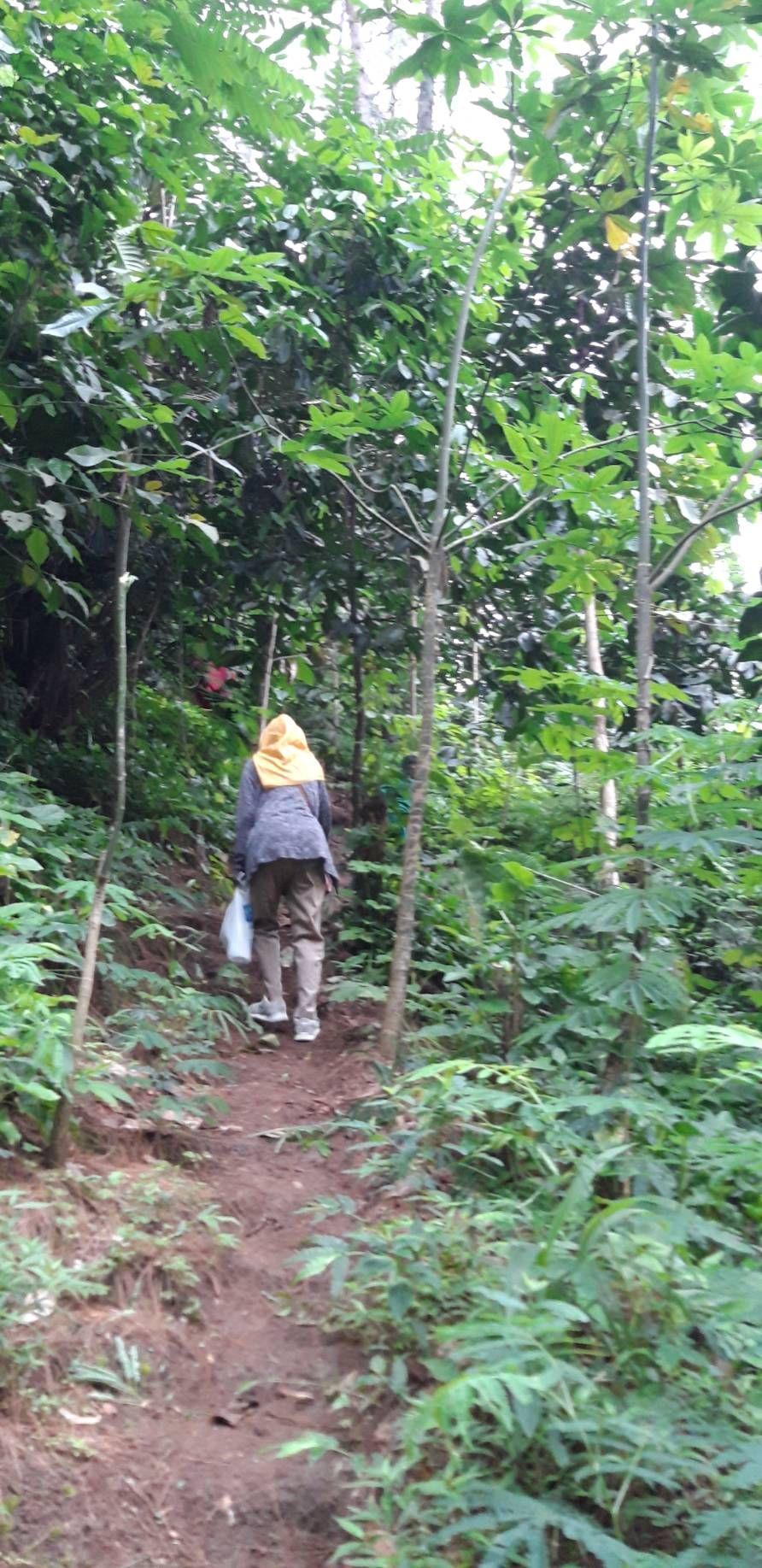 Menyusup di antara pepohonan menuju Tebing Keraton. Dokpri.