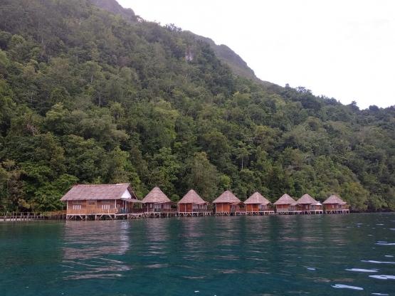 img 20181227 080245 5c44345daeebe128d25f62c7 - Pulau Seram Maluku Tengah