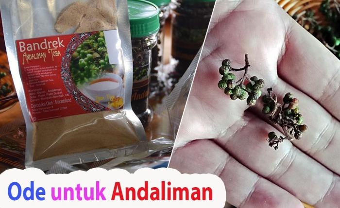 Andaliman. (Foto GANENDRA)