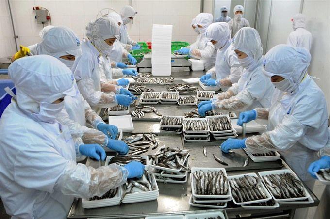 Pekerja asing di Jepang (sumber vietnamnews.vn)