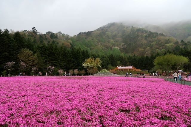 Ada tiruan Gunung Fuji kecil di lokasi (dokpri)
