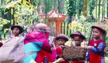 Taman Lebah Madu Cibubur Tempat Wisata Sekaligus Edukasi