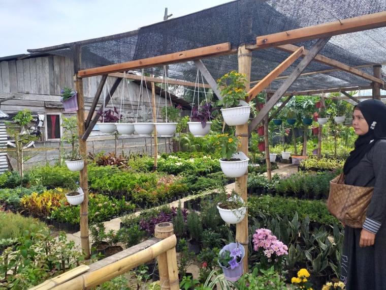Vertikultur Satu Inovasi Untuk Pertanian Indonesia Maju Halaman 1 Kompasiana Com