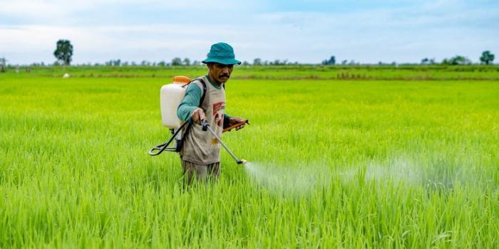 Ilustrasi pengerjaan konvensional pertanian. Sumber: Kompas.com