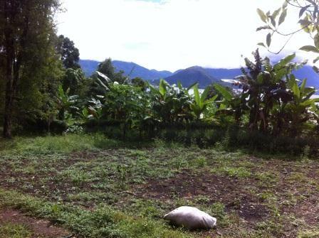 Lokasi Peternakan Ayam, Kelurahan Sasa Ternate [docpri]